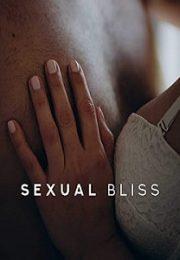 Cinsel Mutluluk 2016 Erotik Film izle